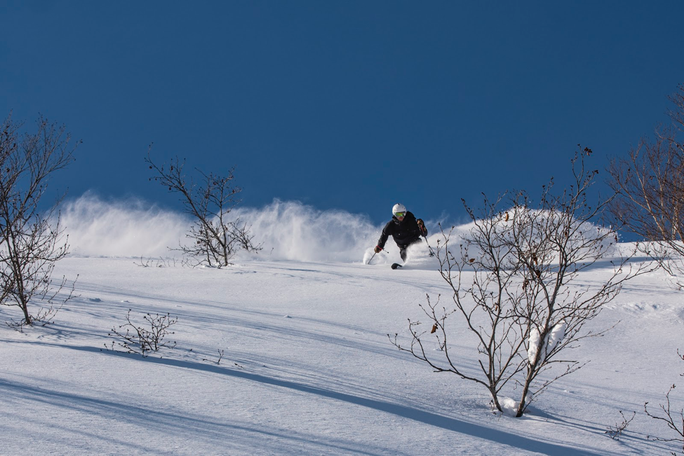 Clark Winter from the Heli team skiing down a run in Japan