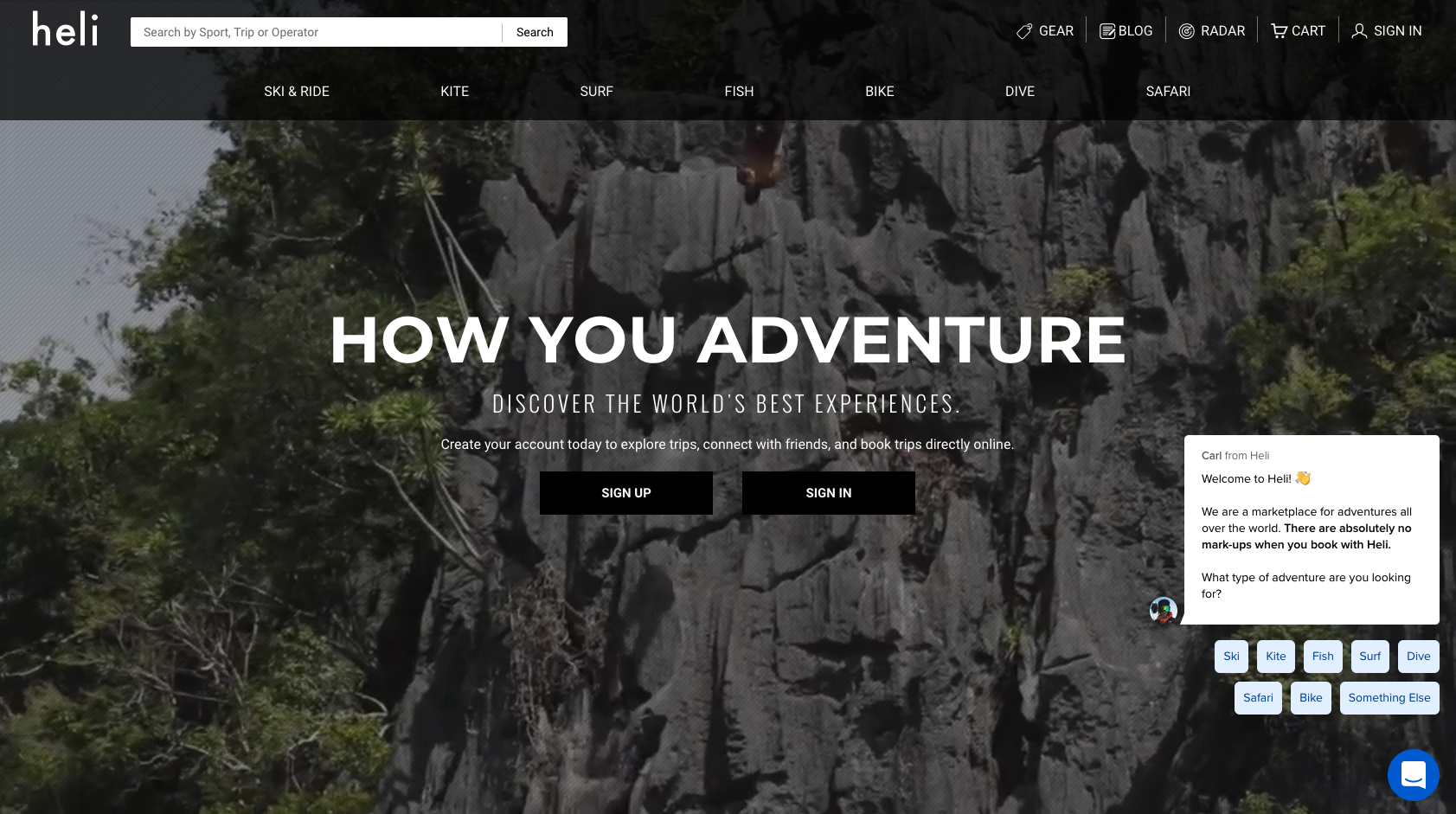 Website showing online chat bot for adventure tour sales